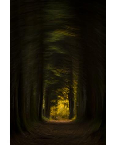 Lumière d'espoir - photographie Fabien Gréban   Aussi sombre soit le chemin, il y a toujours l'espoir de retrouver la lumière.