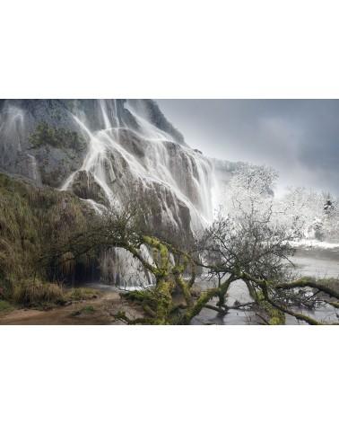 Transition - photographie Nicolas Gascard   Passage de l'hiver au printemps