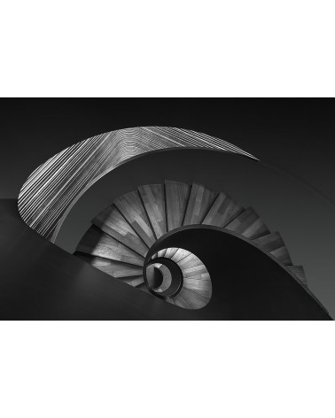 Nautile - photographie Philippe Lagabbe   Escalier ou Nautile ?