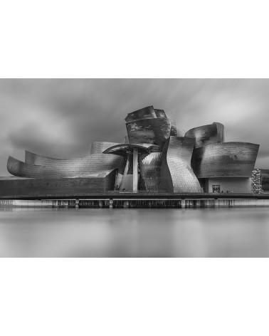 Titane - photographie Philippe Lagabbe   Musée Guggenheim, Chef d'oeuvre d' architecture de Frank Gehry