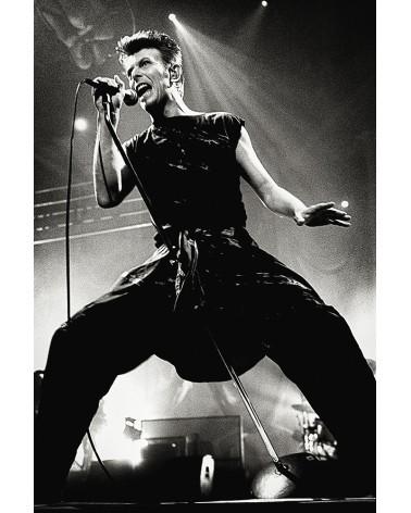 Entre tes jambes- photographie Carole Epinette  David Bowie - Lille - Février 1996